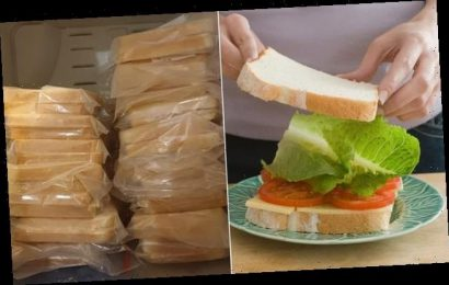 Mother is slammed for freezing school lunch sandwiches