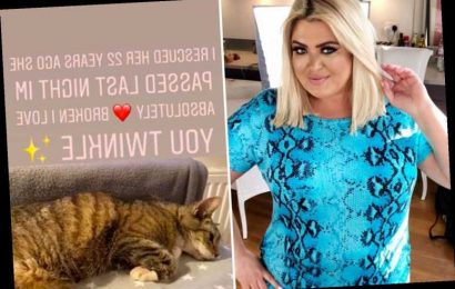 Gemma Collins devastated as beloved cat Twinkle dies 22 years after star rescued her
