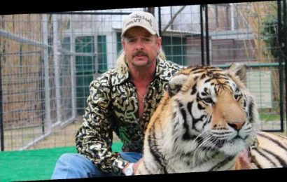 Tiger King TV Show Casts Absolutely Perfect Actor For Joe Exotic
