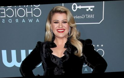 Kelly Clarkson Said She Was on an 'Emotional Roller-Coaster' Before Divorce