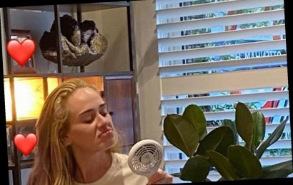 Adele shows off secret tribute to Tottenham hometown as she gives fans rare glimpse inside her LA mansion
