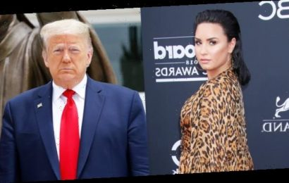 Demi Lovato Pleads With Trump To Be 'A Leader' As Civil Unrest Escalates: I'm 'Begging You'