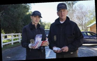 NCIS cancelled: Why is NCIS season 17 not on Netflix?