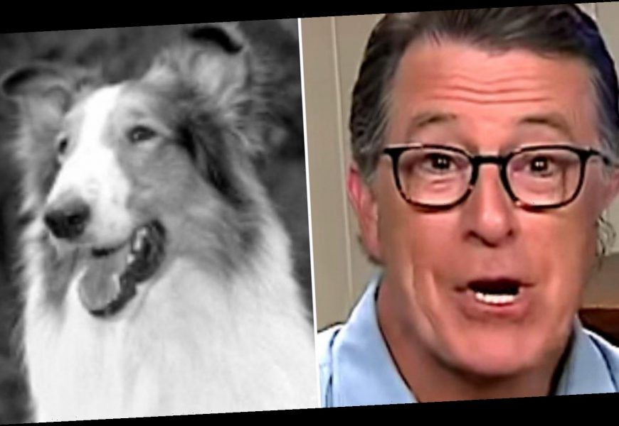 Stephen Colbert Compares Trump Attack On Fauci To Lassie Licking Her Butt