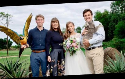 Why Bindi Irwin and Chandler Powell Skipped Their Honeymoon