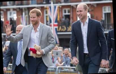 New Book Claims Prince Harry's Spending Habits Contributed to His Feud With Prince William