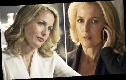 The Fall: Stella Gibson's return 'sealed' as sinister new case evidence 'unearthed'