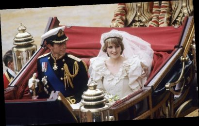 Prince Charles Reportedly Wanted 1 Thing to Be Taken From Princess Diana Upon Their Divorce