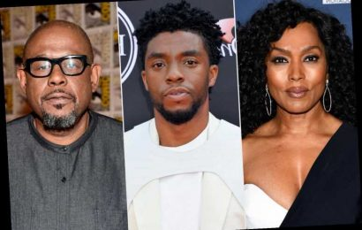 Chadwick Boseman's Black Panther Costars Honor 'Awe-Inspiring' Star: 'Your Light Brightened Our Days'
