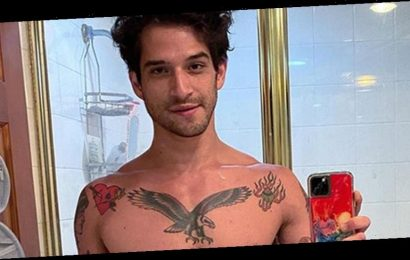 Tyler Posey Poses in His Underwear in a Mirror Selfie!