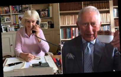 Charles and Camilla have 'adapted quickly' to their online duties