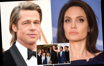 Brad Pitt and Angelina Jolie 'no longer' attend family therapy as 'tensions escalate' during ongoing custody battle