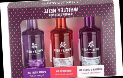 Tesco is selling gin gift sets worth £15.50 for £2.80 – and they'd be great Christmas presents