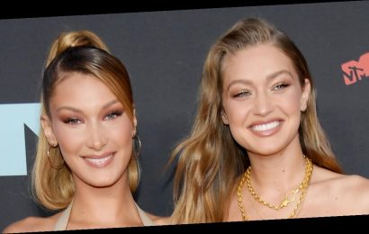Bella Hadid's Sweet Photo with Pregnant Gigi Hadid Tricked Fans Into Thinking She Could Be Pregnant, Too!