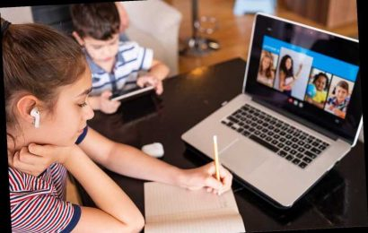 Distance Learning Has 76% of Parents Worried About Their Child's Safety, New Survey Finds