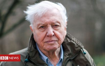 Attenborough to show threat to 'perfect planet'