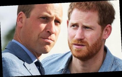 'Modest' Prince William makes subtle dig at 'immature' brother Prince Harry, expert claims