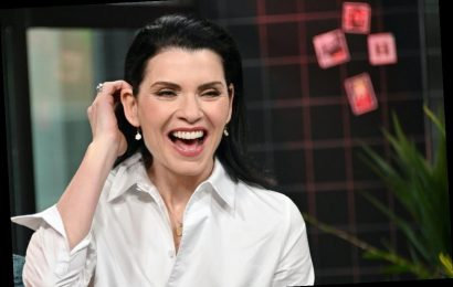 'ER': The Empowering Reason Julianna Margulies Refused to Let Carol Become a Doctor