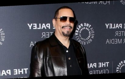 Ice-T-Hosted Virtual Legal Show 'The Mediator' To Get Limited Run On Fox TV Stations
