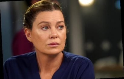 Grey's Anatomy's Ellen Pompeo: This 'Could Very Well Be' the Final Season