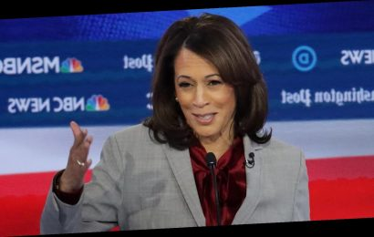 Kamala Harris had a perfect one-liner at the debate