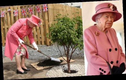 Britons urged to plant trees to mark the Queen's Platinum Jubilee