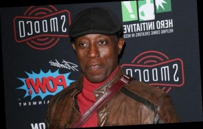 Wesley Snipes Seeking New Talent to Lead His All-Female Action Film Franchise