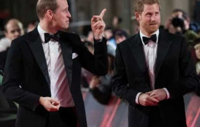 Prince Harry & Prince William's Feud May Finally Be Over