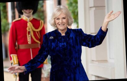 Camilla, Duchess of Cornwall Holds Virtual Christmas Tree Decorating Event: 'Make the Best of It'