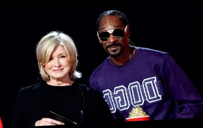 The Real Reason Martha Stewart And Snoop Dogg Are Banned From The UK