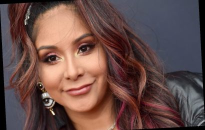 Nicole 'Snooki' Polizzi Returns To Reality TV, But Not To 'Jersey Shore' or MTV
