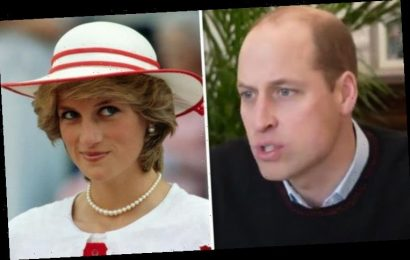 Prince William 'mirrors Princess Diana' in pandemic, body language expert claims