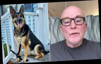Sog saves owner's life by dragging him to phone after he had a stroke