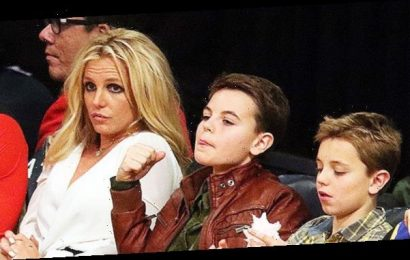 Britney Spears: How She 'Bonds' With Her Teenage Sons Sean, 15 & Jayden, 14, As They Get Older