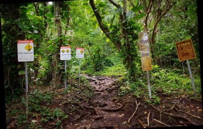 Hawaii considering 'rescue fine' if hikers don't follow signs