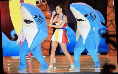 Katy Perry's Latex Super Bowl Costume Split in Half While She Was Rehearsing