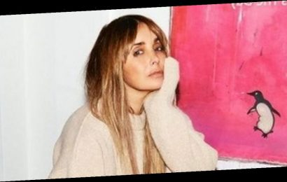 Louise Redknapp struggled amid Jamie split as troll called her fat and worthless