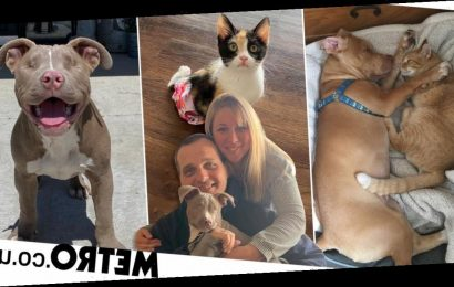 Mum adopts 26 pets and turns her home into an animal sanctuary