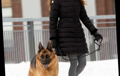 Shailene Woodley Braves the Cold in Snowy Montreal, Plus Usher, Vanessa Hudgens and More