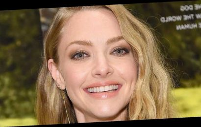 The Hidden Meaning We All Missed In Amanda Seyfried's Golden Globes Outfit