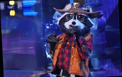 The Masked Singer: The First Clues About Seashell, Raccoon and More