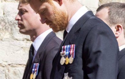 Daniela Elser: Royal snub – Charles and Harry not seen together at Prince Philip's funeral