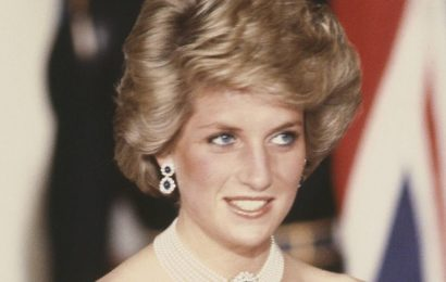 """Former White House Photographer Says Princess Diana Was """"Blushing"""" as She Danced With Neil Diamond"""