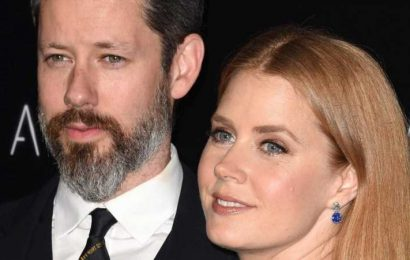 Inside Amy Adams And Darren Le Gallo's Marriage