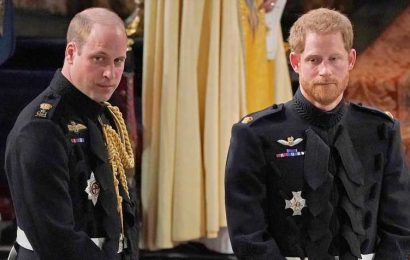 Prince William, Prince Harry Won't Walk Together at Prince Philip's Funeral