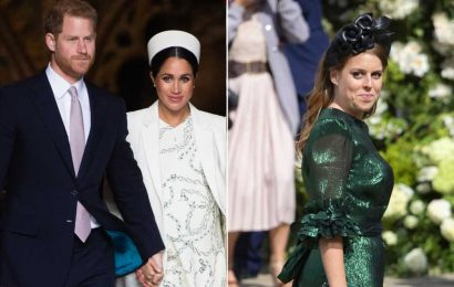 Princess Beatrice's pregnancy reveal a 'total dig' at Meghan, Harry