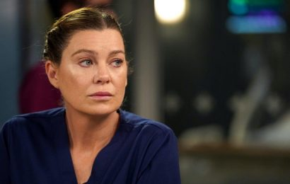 'Grey's Anatomy' Fans Credit Meredith and Her 'Sisters' for Keeping the Show Alive