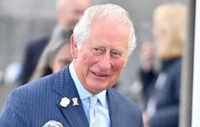 Prince Charles Gushes About Granddaughter Lilibet In Sweet Tribute During Royal Engagement