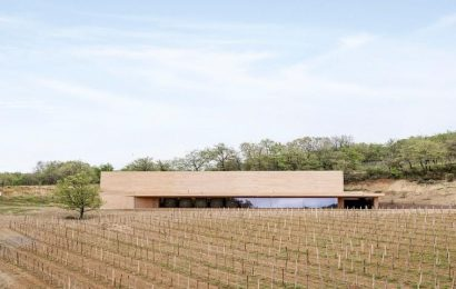 This Architect is Shaking Up Classic Vineyard Looks