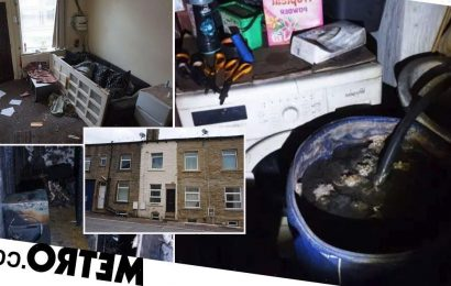 Three-bed house goes on sale for £50k, but it'll need a major clean-up